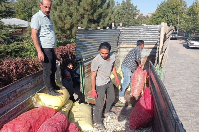 Palu'da çiftçilere sarımsak tohumu dağıtıldı